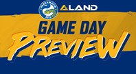 Game Day Preview - Storm v Eels